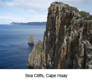 Cape Hauy Day Tour