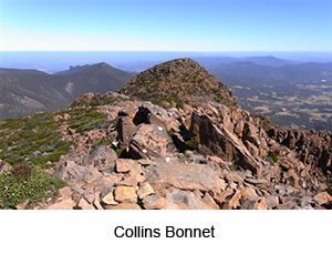Collins Bonnet Guided Walk