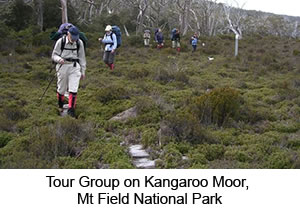 Mt Field Guided Walk Tasmania