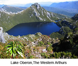 Tasmanian Wilderness Experiences Walking Tours | Multi Day Tours | Walk The Western Arthur, Tasmania