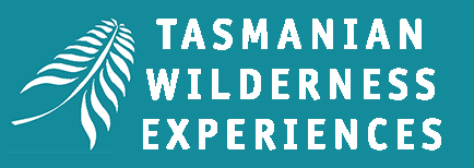 Tasmanian Wilderness Experiences bush walks, tours, accommodation and transport