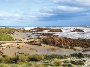 TWE Tarkine Coastal Adventure Tasmania
